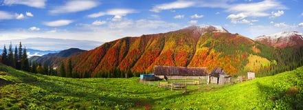 Осень и зима совместно Стоковое Фото