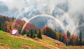 Осень и зима совместно Стоковая Фотография