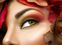 Осень компенсирует коричневые глаза Стоковые Изображения RF