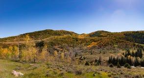 Осень Колорадо Стоковые Изображения