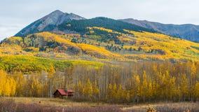 Осень Колорадо Стоковое Изображение RF