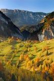 осень красит панораму Румынию стоковые фотографии rf