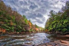 Осень красит пылая на одичалом реке в Аппалачи стоковое фото rf