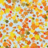 осень листает картина безшовная Стоковое Изображение