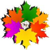 осень листает клен Стоковые Изображения