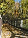 осень Мичиган стоковое фото