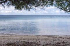 Осень морем Стоковая Фотография