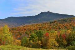 Осень над держателем Mansfield в Вермонте стоковая фотография rf