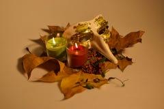 Осень натюрморта Стоковая Фотография