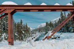 Осень национального парка Banff стоковое изображение rf