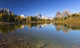 Осень национального парка Yoho красит ландшафт лиственниц стоковые фото