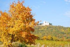 """Осень на """"Leopoldsberg"""" Стоковые Изображения RF"""