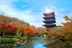 Осень на виске Toji в Киото, Японии Стоковая Фотография