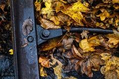 Осень на железной дороге леса Стоковые Фотографии RF