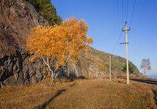Осень на железной дороге Circum-Байкала Стоковое Фото