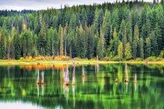 Осень на национальном лесе Gifford Pinchot озера гусын Стоковое Изображение