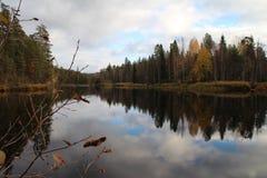 Осень на национальном парке Oulanka Стоковое Фото