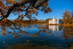 Осень на озере Стоковые Изображения