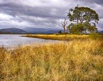 Осень на озере Bassenthwaite Стоковые Изображения RF