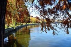 Осень над озером Стоковые Фотографии RF