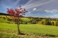 Осень над долиной Стоковые Фото