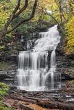 Осень на падениях Ganoga стоковое изображение rf