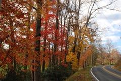 Осень на проселочной дороге стоковое изображение rf