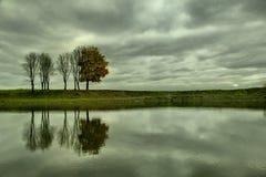 Осень на реке Стоковые Фотографии RF
