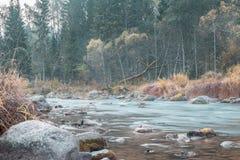 Осень на реке Amata, район Vidzeme, общественный парк природы Gauja стоковое изображение