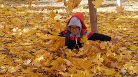 Осень Небольшие дети в желтых листьях Игра детей в улице с упаденными листьями Роща осени берез и сток-видео