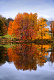 Осень Новой Англии Стоковое фото RF