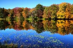 Осень Новой Англии Стоковые Фото