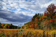 Осень Новой Англии Стоковые Фотографии RF