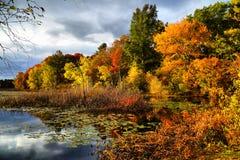 Осень Новой Англии Стоковые Изображения