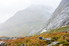 осень Норвегия Стоковые Изображения