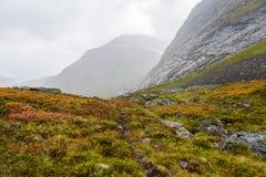 осень Норвегия Стоковые Изображения RF