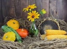 Осень овощей с солнцецветом и ушами пшеницы Стоковые Изображения