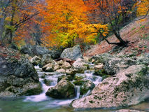 осень около вала реки Стоковая Фотография