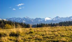 Осень около гор Стоковые Фото