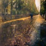 Осень осмотрите окно Селективный фокус Стоковое Изображение
