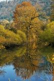 осень отразила воду вала Стоковые Фото