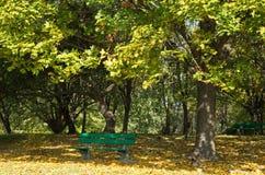 Осень парк стенда пустой горизонтально Стоковые Изображения RF