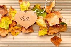 Осень/падение - предпосылка Стоковое Изображение RF