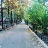 Осень переулка Стоковое фото RF