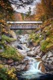 Осень покрытого моста стоковые изображения rf