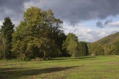 Осень поля Стоковое фото RF