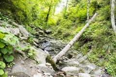осень раньше сделала изображением гор горы приполюсный поток стоковые фотографии rf