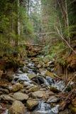 осень раньше сделала изображением гор горы приполюсный поток Подача воды весной Стоковые Фотографии RF