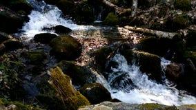 осень раньше сделала изображением гор горы приполюсный поток акции видеоматериалы