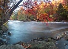 Осень речных порогов Oxtongue Стоковое фото RF